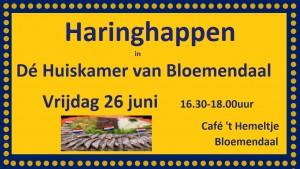 Haring 26-06-2015-2